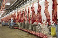 Los trabajadores despiezan las canales en tajos de carne -redondo, solomillo, costillas-, que JBS exporta a todo el mundo. Los cascos y los huesos se muelen para elaborar alimentos para peces y fertilizantes.