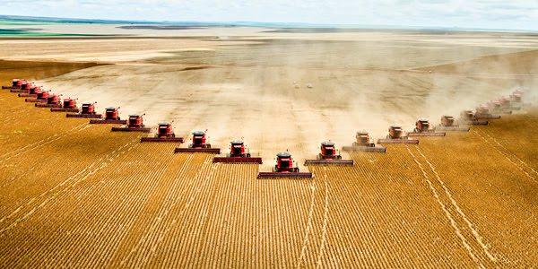 La agroindustria tiene como principal mecanismo de producción el monocultivo, que reduce la biodiversidad, pierde las propiedades productivas del suelo, provoca su erosión e introduce a la dinámica productiva en una espiral de consumo creciente de agroquímicos que derivan en cáncer, como el caso del herbicida glifosato, según investigaciones de Andrés Carrasco en Argentina